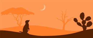 在大草原风景的Meerkat 图库摄影