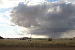 在大草原2的雨 图库摄影