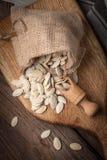 在大袋和匙子的南瓜籽 库存照片