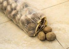 在大袋土豆,一个大袋土豆,土豆,图片, 免版税库存图片