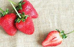 在大袋的草莓 库存图片