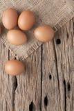 在大袋的鸡蛋 免版税图库摄影
