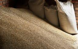 在大袋的麦子五谷在磨房存贮 库存照片