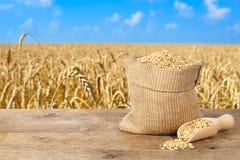 在大袋的麦子五谷 图库摄影