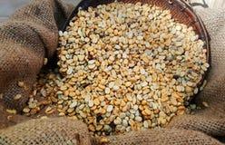 在大袋袋子照片烤的咖啡豆 免版税库存照片