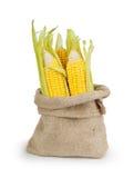 在大袋袋子的黄色新鲜的玉米 库存图片