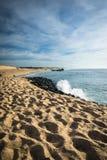 在大西洋海岸线的风景沙滩与在蓝天, capbreton, les兰德斯,法国的碎波 免版税库存图片