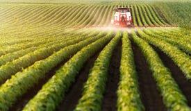 在大豆豆领域的拖拉机喷洒的杀虫剂 图库摄影