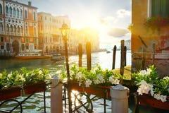 在大运河,威尼斯附近的花 免版税库存图片