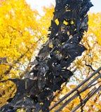 在大金属曲拱的美丽的蝴蝶在秋天公园 库存照片