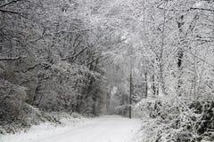 在大雪期间的森林公路在短时间内使一切白色 免版税库存照片