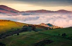 在大雾上的象草的山坡在山 免版税库存照片