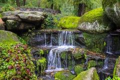 在大青苔中的美丽如画的小瀑布瀑布在风景索非亚公园,乌曼,乌克兰,秋天盖了石头 免版税库存图片