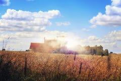 在大麦领域的联合收割机在收获期间 免版税库存照片