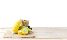 在大麻大袋织品和木头台式孤立的新鲜的自然玉米 图库摄影