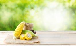 在大麻大袋织品的新鲜的自然玉米和木头在bl的台式 免版税库存照片