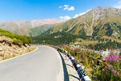 在大Almaty湖、自然绿色山和蓝天的路在阿尔玛蒂,哈萨克斯坦,亚洲 免版税库存照片