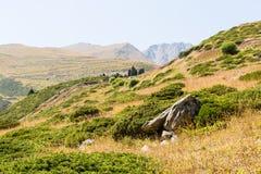 在大Almaty湖,天山附近的自然山在阿尔玛蒂,哈萨克斯坦,亚洲 免版税库存图片