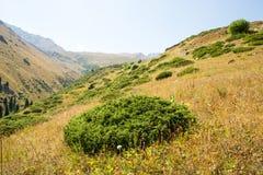 在大Almaty湖,天山附近的自然山在阿尔玛蒂,哈萨克斯坦 免版税库存照片