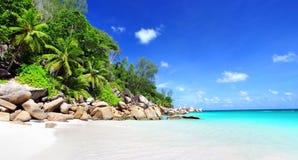 在天堂海滩的惊人的热带假日塞舌尔群岛 免版税库存图片