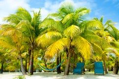 在天堂海滩的椅子 免版税库存图片