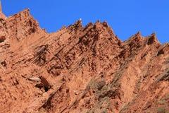 在天山山的神奇峡谷 库存照片