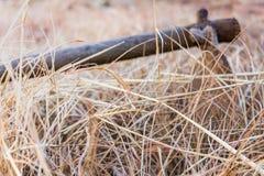 在天旱中间的被放弃的锄 库存照片
