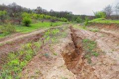 在天旱以后的土地 免版税库存照片