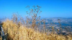 在天时间的山景 免版税库存照片