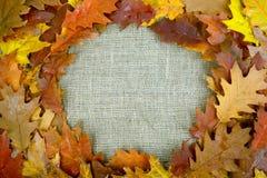 在天然纤维的秋天叶子 下落的橙色叶子 橡木 麻袋布 背景 免版税图库摄影