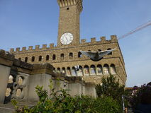 在天空中,佛罗伦萨,托斯卡纳,意大利 库存图片