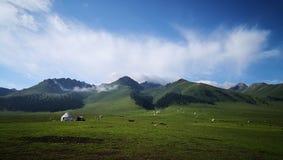 在天空大草原的Yurts 库存图片