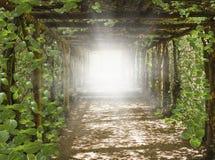 在天空的光 对GoCosmic医治用的能量的方式 库存照片