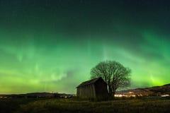 在天空的北部光在挪威上,看见从Selbu地区 在树和老,木谷仓的看法 免版税库存照片