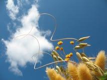 在天空的卷毛 免版税图库摄影