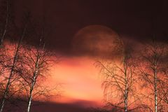 在天空的大月亮 免版税库存图片