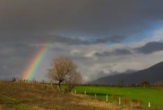 在天空的彩虹 免版税库存照片