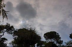 在天空的戏曲 库存图片