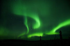 在天空的所有极光 库存照片