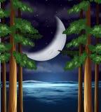 在天空的新月形月亮 皇族释放例证