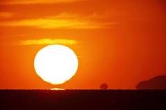 在天空的明亮的大太阳 免版税库存图片