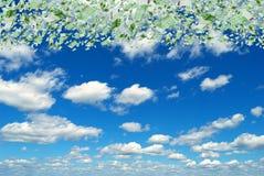 在天空的欧元。 免版税库存照片