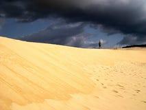 在天空的沙丘灰色 库存图片