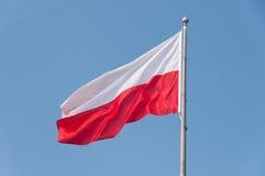 在天空的波兰旗子 库存图片