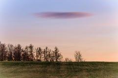 在天空的混合的树荫在日落以后 免版税库存图片