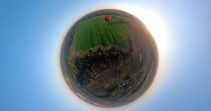 在天空的热空气气球在领域球状全景 影视素材