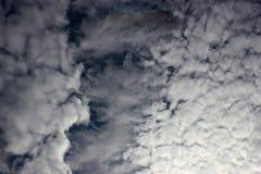 在天空的生活 免版税库存图片