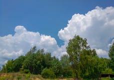 在天空的积云在森林上 免版税库存图片