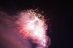 在天空的红色和紫色烟花 免版税库存照片