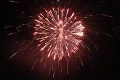 在天空的红色烟花在晚上 库存图片